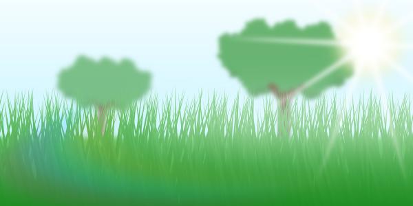 grass-final